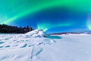 northern lights in the dark blue sky over snowy ground
