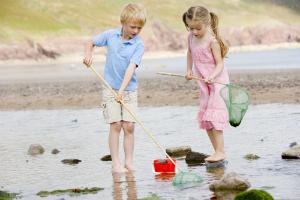 v2 Family-Kids-Beach-Rockpool-Activities-DP4780212