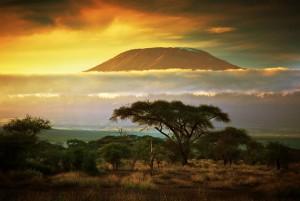 Kenya_Safar1_Travel